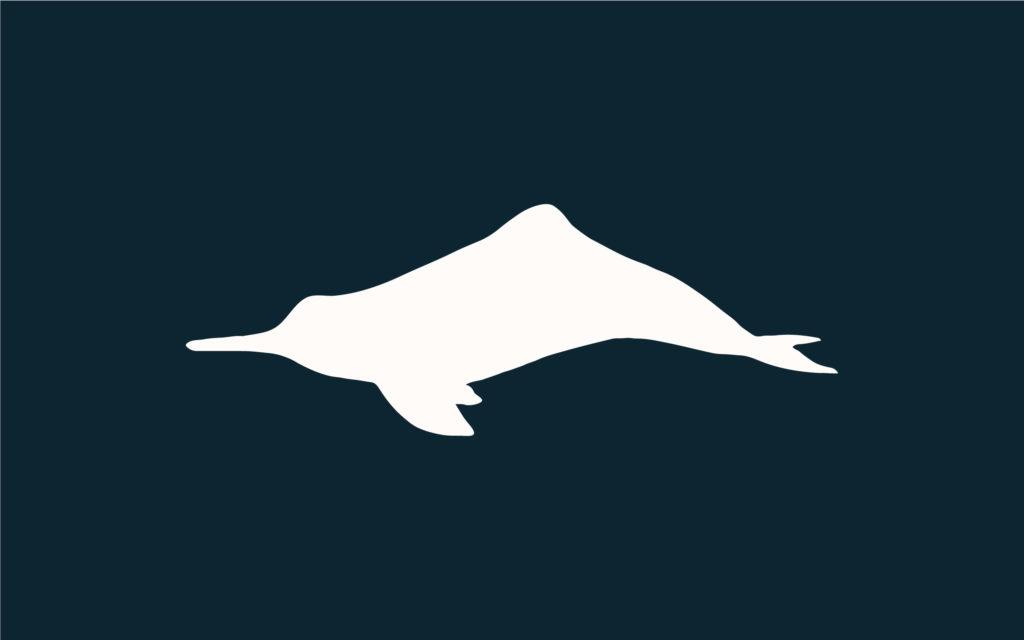 NMMF - Amazon River Dolphin